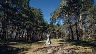 Дима и Марина Свадебный клип