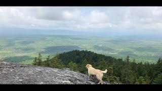 Stella Climbed a Mountain!