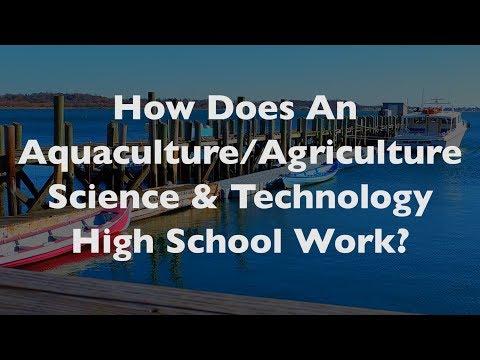 The Sound School: An Aquaculture High School