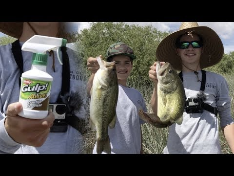 Do Fish Attractants Work? Bass Fishing With Berkley Craw Spray Scent