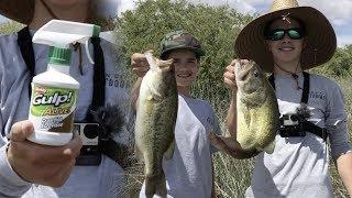 Риби Атрактанти Працюють? Бас риболовля з Берклі зоб спрей запах