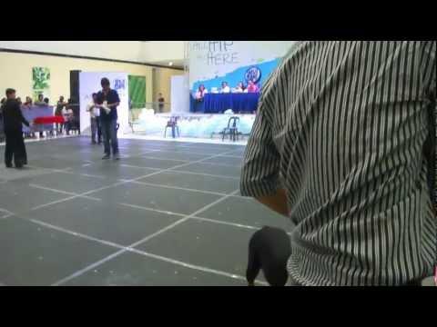 akierah's first tym dog show 9/22/12 sm anex #1