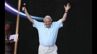 Sir David Attenborough's surprise appearance at Glastonbury