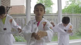 Martial Arts Lesson 1 - Fantastic Kids TV