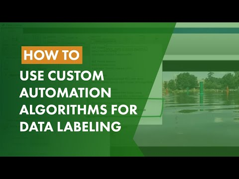 How to Use Custom Automation Algorithms for Data Labeling