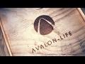 Avalon Life Update 9.2.2017 Infos aus Dubai