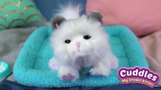 Little Live My Dream Kitten Cuddles | How To Video