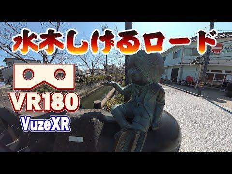 �VR180 Vuze XR】鳥� 水木��るロード | Mizuki Shigeru Road
