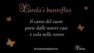 Carola's Butterflies 2019 - 2020  #iocantodacasa #insiemecelafaremo #iorestoacasa