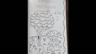 Живая природа (дневник исследователя