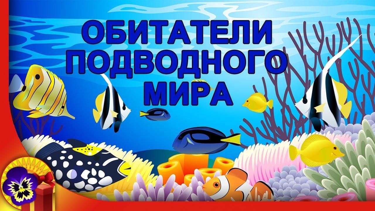 Картинки подводного мира с надписями, работе