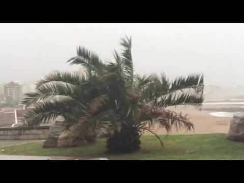 Intenso temporal de viento y lluvia en Mar del Plata: suspendieron las clases lunes y martes