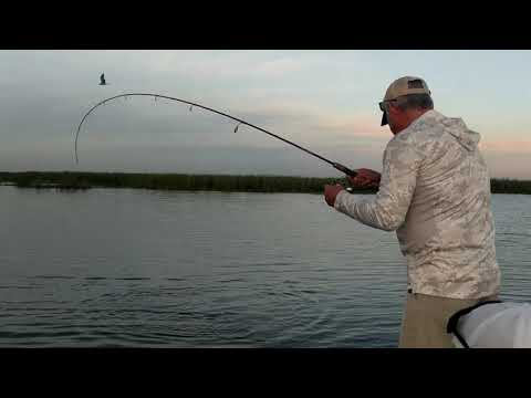 Lake Okeechobee Fishing Charter With Captain Brian Brown