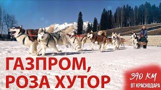 Отдых на курортах «Роза Хутор» и «Газпром» | «Больше чем отдых»