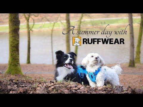 A summer day with Ruffwear [Summer 2017]