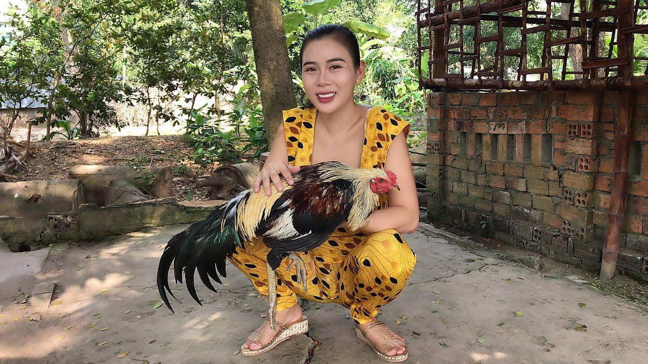 Angel Yumi Cooking | lemongrass stewed fighting chicken| YuMi Daily Life