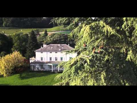 DroneVision.ch at Charlie Chaplin lastest house in Vevey-Switzerland