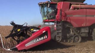 Case IH 9240 Axial-Flow Combine Harvesting Soybeans