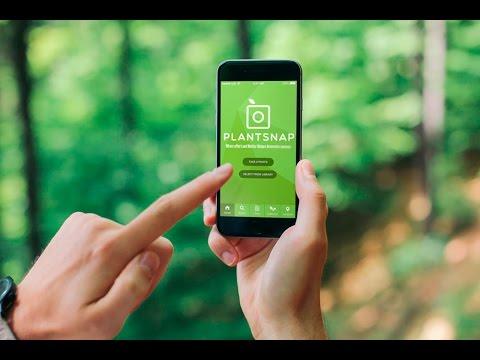PlantSnap: The App that Identifies Plants in an Instant