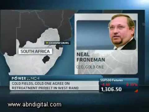 Neal Froneman on Gold Fields JV with Gold One