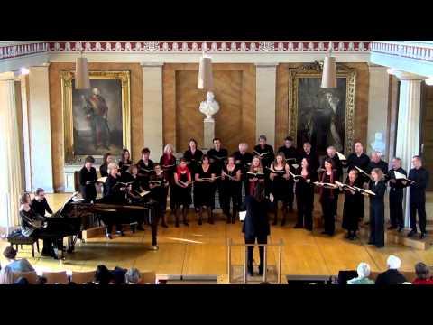 Nr. 9 - Am Donaustrande - Johannes Brahms - Liebeslieder Walzer Op. 52 - (HD)