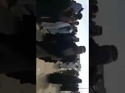 عراضه ال هرموش الشبل في فاتحه الساده ال سيد بطه