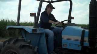 Blackberry Farms in Louisiana