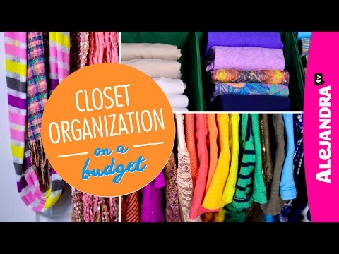 Closet Organization on a Budget (Part 4 of 4 Dollar Store Organizing)