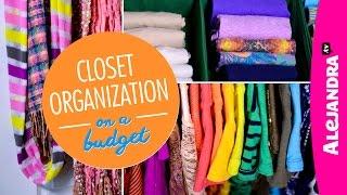Closet Organization on a Budget (Part 4 of 4 Dollar Store Organizing)
