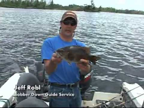 Bobber down guide service turtle flambeau flowage for Wisconsin fishing guides