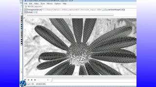 external Applications Tutorial - DVD slideshow GUI