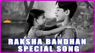 andala pasi papa raksha bandhan special song in chitti chellelu telugu movie