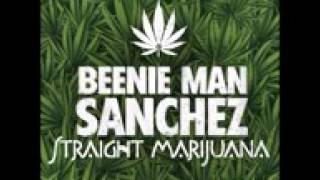 Beenie Man & Sanchez   Straight Marijuana November 2015 @latestmp3 ent