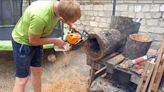 Вазоны из пеньков/Хотели поработать невышло/Что за дерево?/Мы трудяжки/Стройка  дома своими руками.