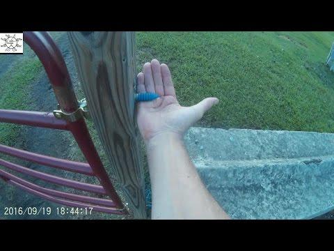 More Dangerous Than Originally? - Franklinville NC