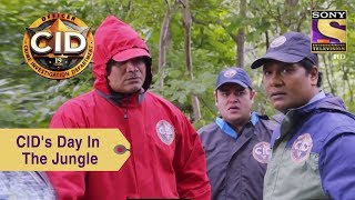 Your Favorite Character | The CID Team's Day In The Jungle | CID