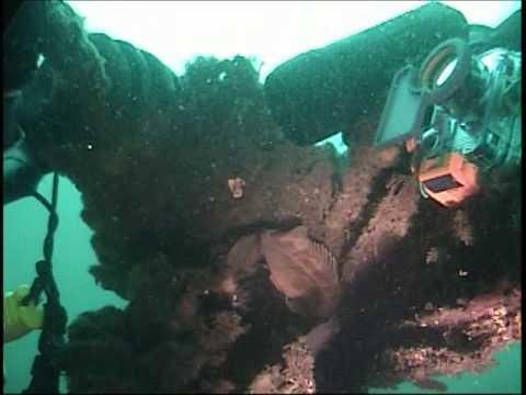 Cove 2  (Seattle Wa)  4 11 09  Scuba Dive