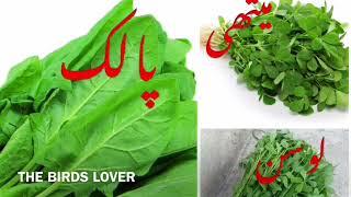 Benefits of Palak, Methi, and Loosan for Birds in Urdu/Hindi