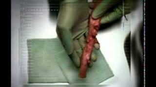 Жесть..Что с организмом делают сигареты!!!(http://www.ponsshop.ru/?p=7785 «Понс — Революция в Курении!» Сигареты без огня, пепла и запаха. Без смол, канцерогенов..., 2011-02-07T20:08:00.000Z)