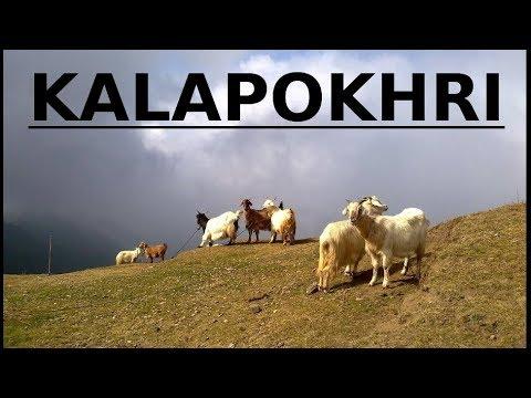 Sandakphu Trekking - Kalapokhri - Off Darjeeling Beautiful West Bengal Incredible India Nepal Border