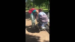 Две собаки разорвали котенка - а хозяйки спокойно гуляют по парку с ребенком