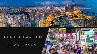 Hyperlapse of Hong Kong's city lights - Planet Earth II: Cities - BBC One