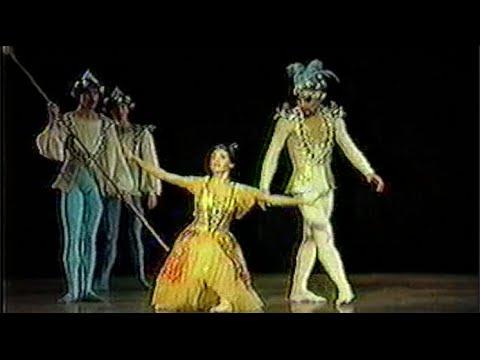 """""""Le Papillon"""" Ballet de Santiago"""