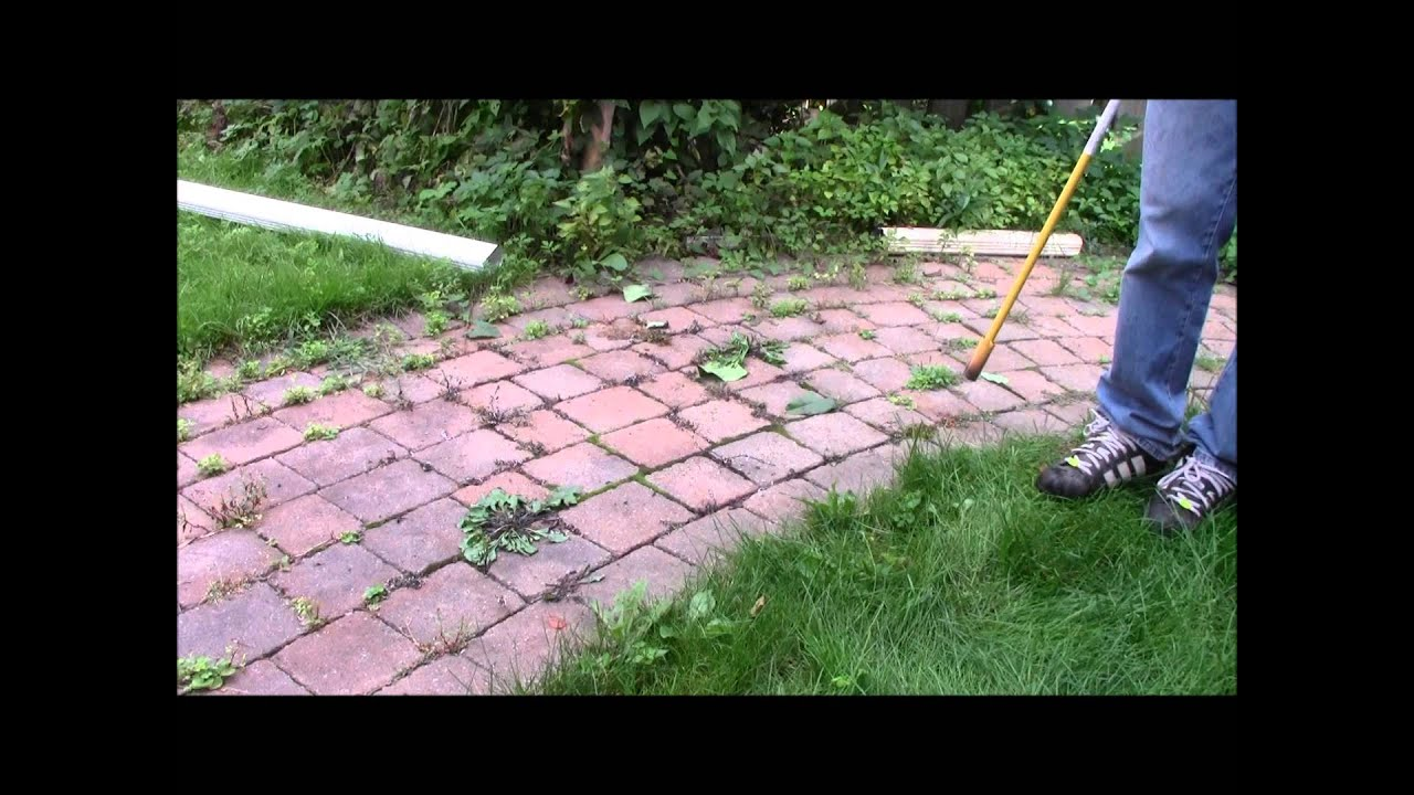 How to kill weeds with Propane Torch YouTube