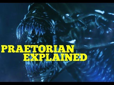 Xenomorph Praetorian Guard Explained (Praetorian Alien)