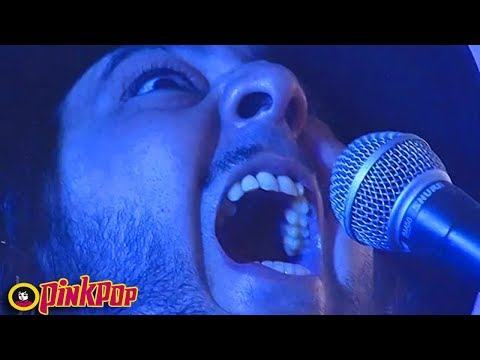 System Of A Down - Bounce / Suggestions live PinkPop 2017 [HD | 60 fps]