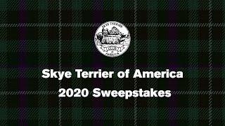 2020 Skye Terrier Virtual Sweepstakes