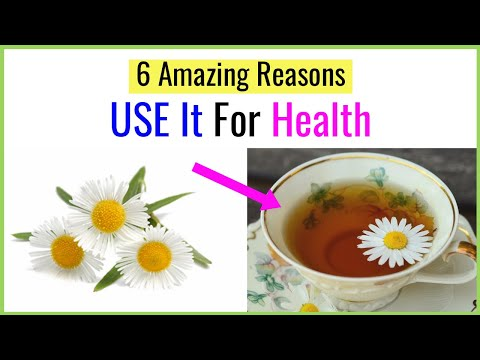 6 Incredible Benefits Of Drinking Chamomile Tea for Health