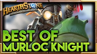 Murloc Knight Hearthstone Moments | Hearthstone Funny Best Plays Lucky Moments