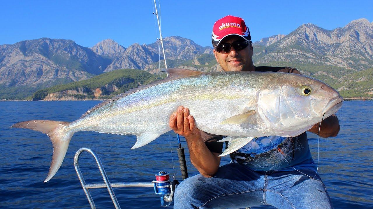 Dev Balıklardan Hayatımızın Dayağını Yedik / Defeated By Giant Amberjacks